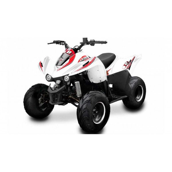 New Big Foot 110cc